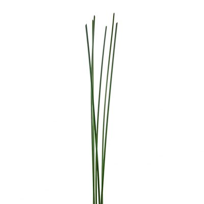 Juncus javelin greens