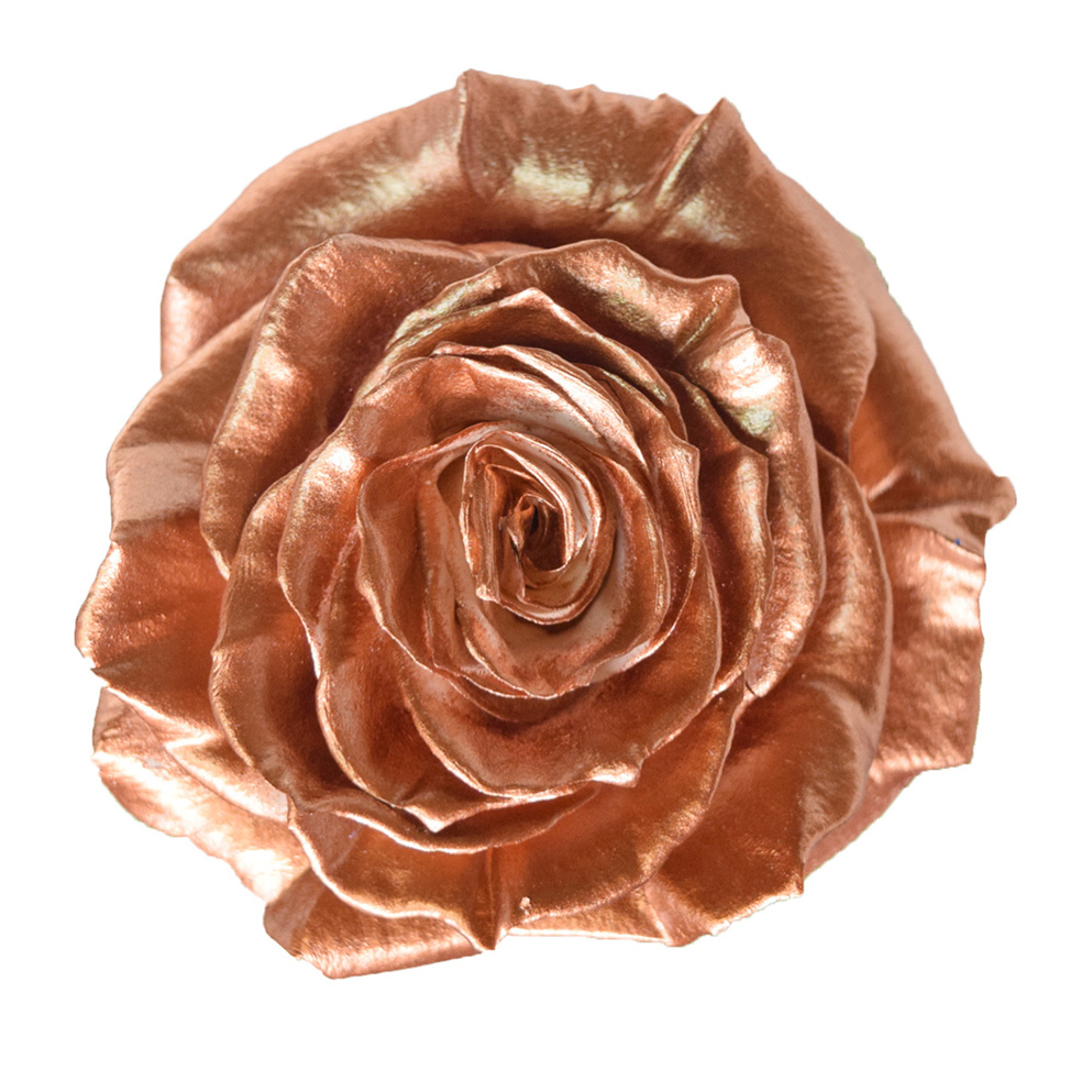 Tinted roses metalic copper